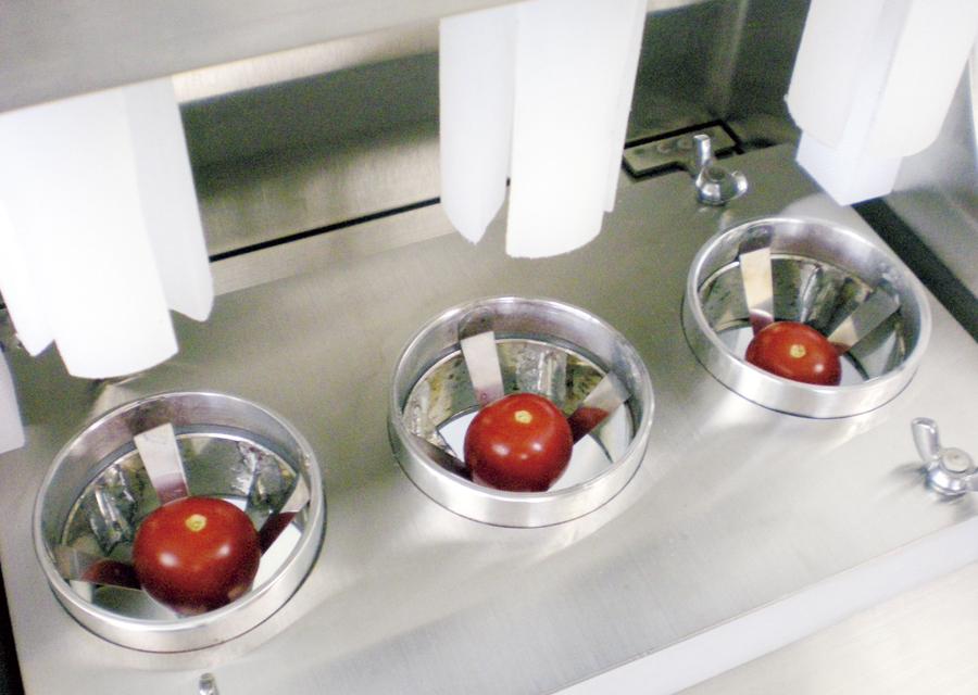【特注】プチトマト分割